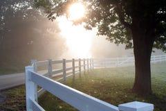 Free Misty Morning Stock Photos - 3081123