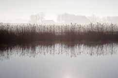 Misty morning. Landscape with river and farms Royalty Free Stock Images