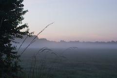 Misty Morning. Light Fog over Field at Sunrise stock photos