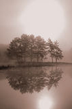 Misty morning. A beautiful picture in sepia tone of the morning mist and the reflection of the rising sun in a lake royalty free stock photos