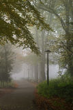 Misty morning. Wonderful part of a park on a misty morning during fall Stock Image