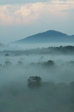 Misty morning Royalty Free Stock Photography