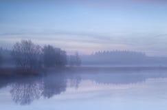 Misty morning on autumn swamp Stock Photos