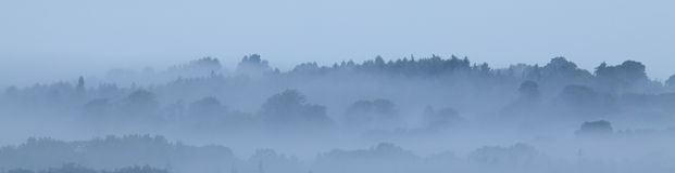 Misty Morning banner background Stock Image