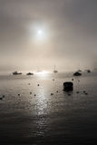 Misty morning in bay Stock Images