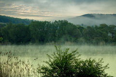 Misty Morning bij een Meer Stock Fotografie