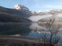 The Misty Morning on the lake Royalty Free Stock Images