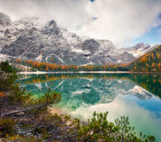 Misty morning on Braies Lake with Seekofel mount on background. Royalty Free Stock Photo