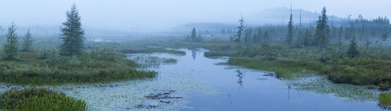 Misty Morning on Brown's Tract Inlet Stock Photo