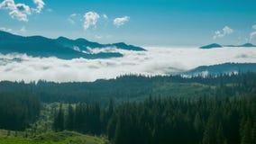 Misty Morning dans les montagnes clips vidéos