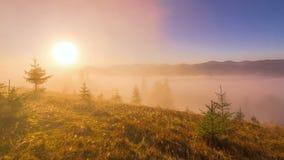 Misty Morning dans les montagnes banque de vidéos