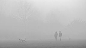 Misty Morning dog walkers Royalty Free Stock Photo