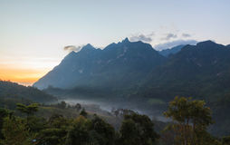 Misty in the morning at Doi Luang Stock Photo