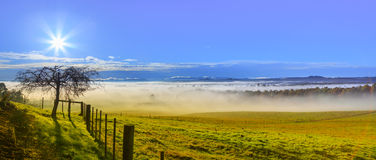 Misty Morning on the Farm Royalty Free Stock Photo