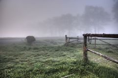 Misty morning on the field Royalty Free Stock Images