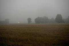 Misty morning field Royalty Free Stock Photography
