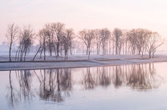 Misty morning.. stock images