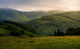 Misty morning in green mountains Royalty Free Stock Photos