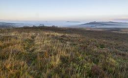Misty morning on heathland Royalty Free Stock Photo