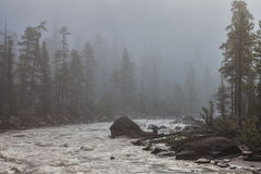 Misty morning on the Kicking Horse Rive Stock Images