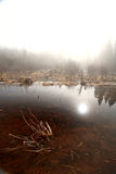 Misty Morning Lake. In Spring Saskatchewan Stock Photos
