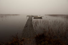 Misty morning by the lake royalty free stock photo