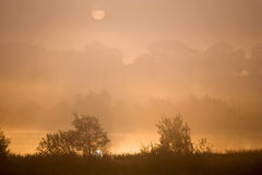 Misty morning lake Royalty Free Stock Images