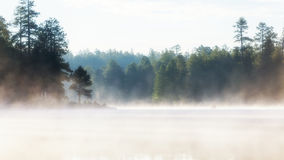 Misty Morning Lake bij Zonsopgang Royalty-vrije Stock Afbeeldingen