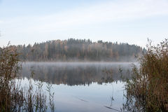 Misty morning at the lake in country Royalty Free Stock Photo