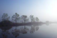 Misty morning by the lake. Misty morning by the mistic lake stock photography