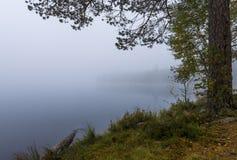 Misty morning on the lake Royalty Free Stock Photos