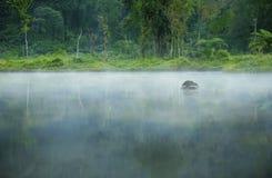Misty Morning Landscape. Misty morning on a small lake Stock Image