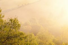 Misty morning in landscape Royalty Free Stock Image