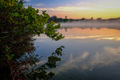 Misty Morning Mirror Lake Sunrise. This sunrise scene shows the morning fog on a lake in Michigan with branch and sky mirrored by the still water. Plenty of room stock photos
