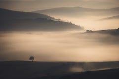Misty morning mountain Stock Photography