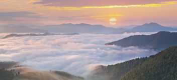 Misty morning in the mountains at the summer Royalty Free Stock Image