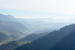 Misty morning in mountains Royalty Free Stock Images