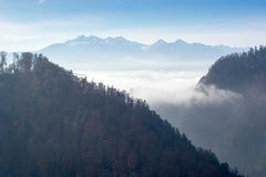 Misty morning in mountains Royalty Free Stock Photography