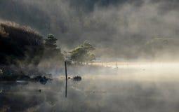 Misty morning Royalty Free Stock Photography