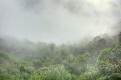 Misty morning at Nagarkot Stock Photos