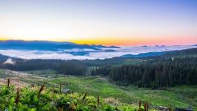 Misty Morning nelle montagne video d archivio