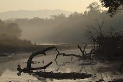 Misty morning on nepali jungle, Nepal Royalty Free Stock Photos