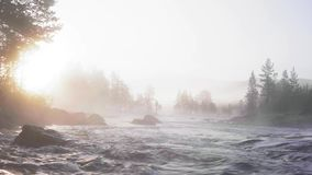 Misty morning in Norway stock video