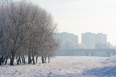 Misty morning on the outskirts of the city Royalty Free Stock Images