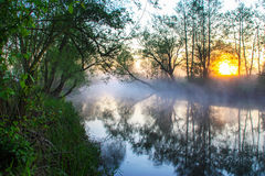 Misty morning over the river Stock Image