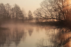 Misty morning over the river. Sunrise stock photo