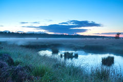 Misty morning over swamp Royalty Free Stock Photos