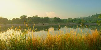 Free Misty Morning Panorama Royalty Free Stock Photography - 19769057