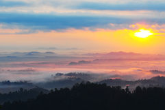 Misty morning at Panorama Hill. Stock Image
