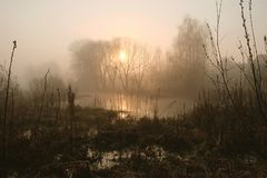Misty morning on the river. Dawn.  stock image